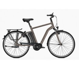 Raleigh Corby 8 621w, Brown/grey
